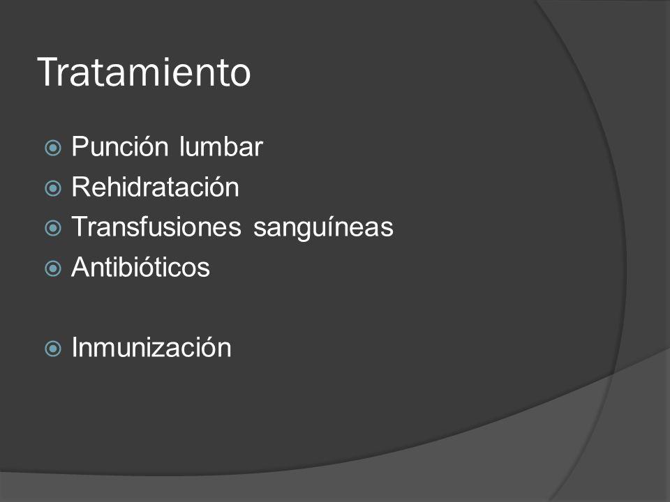 Tratamiento Punción lumbar Rehidratación Transfusiones sanguíneas Antibióticos Inmunización