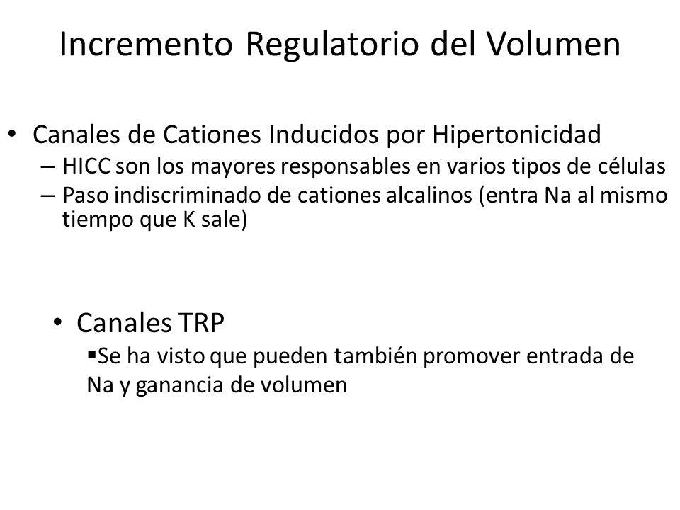 Incremento Regulatorio del Volumen Canales de Cationes Inducidos por Hipertonicidad – HICC son los mayores responsables en varios tipos de células – P