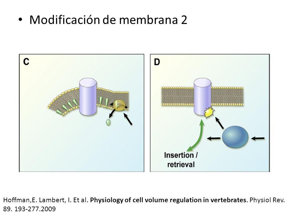 Modificación de membrana 2 Hoffman,E. Lambert, I. Et al. Physiology of cell volume regulation in vertebrates. Physiol Rev. 89. 193-277.2009