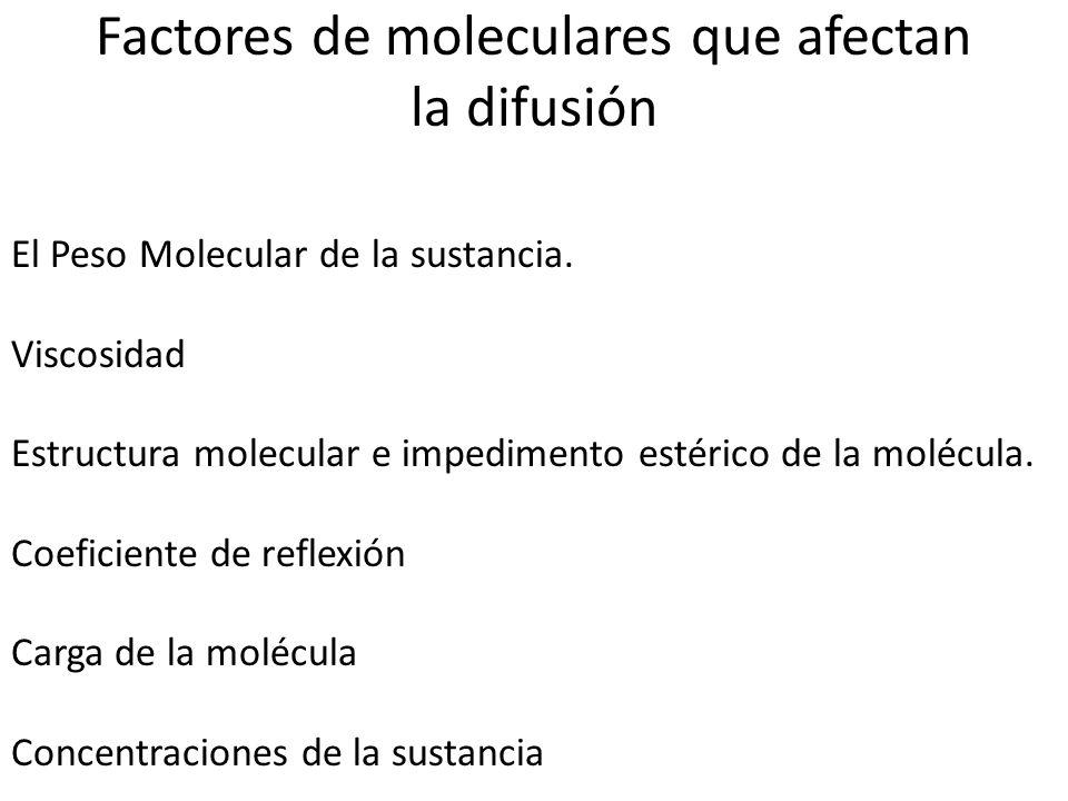 Factores de moleculares que afectan la difusión El Peso Molecular de la sustancia. Viscosidad Estructura molecular e impedimento estérico de la molécu