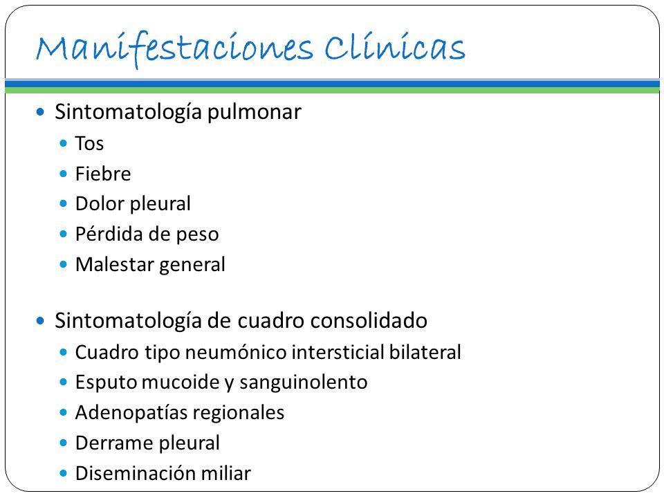 Manifestaciones Clínicas Sintomatología pulmonar Tos Fiebre Dolor pleural Pérdida de peso Malestar general Sintomatología de cuadro consolidado Cuadro