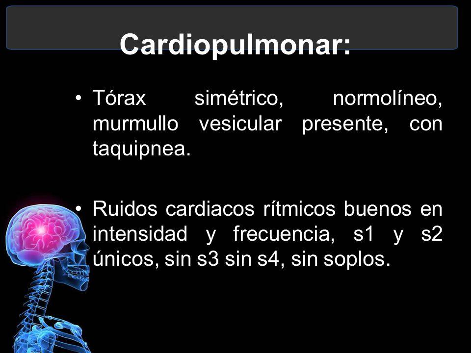 Cardiopulmonar: Tórax simétrico, normolíneo, murmullo vesicular presente, con taquipnea. Ruidos cardiacos rítmicos buenos en intensidad y frecuencia,