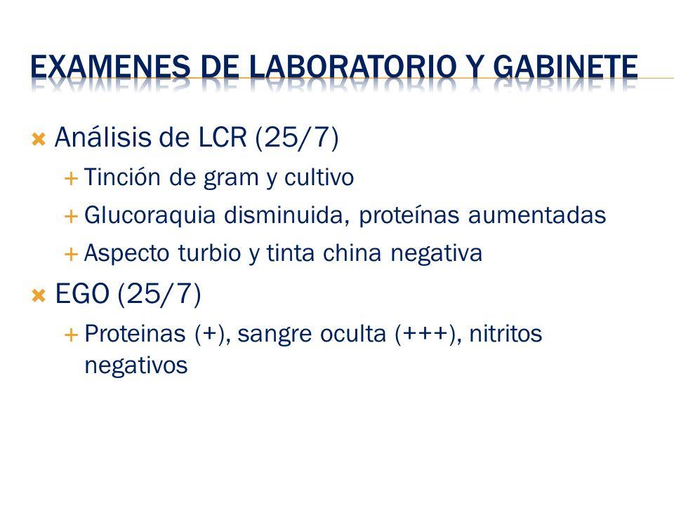 Análisis de LCR (25/7) Tinción de gram y cultivo Glucoraquia disminuida, proteínas aumentadas Aspecto turbio y tinta china negativa EGO (25/7) Protein