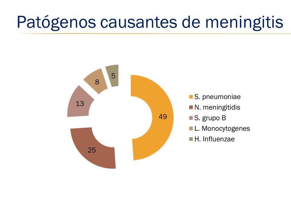Patógenos causantes de meningitis