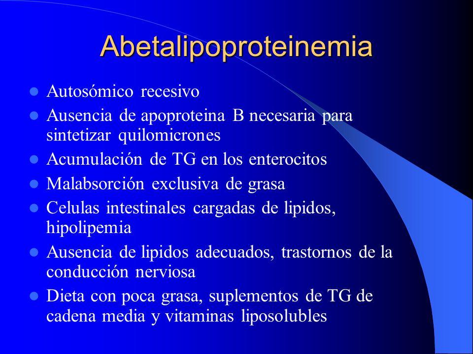 Abetalipoproteinemia Autosómico recesivo Ausencia de apoproteina B necesaria para sintetizar quilomicrones Acumulación de TG en los enterocitos Malabs