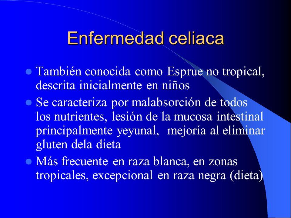 Enfermedad celiaca También conocida como Esprue no tropical, descrita inicialmente en niños Se caracteriza por malabsorción de todos los nutrientes, l