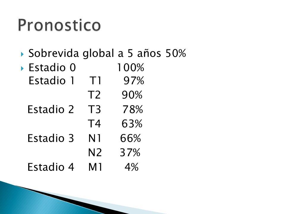Sobrevida global a 5 años 50% Estadio 0 100% Estadio 1 T1 97% T2 90% Estadio 2 T3 78% T4 63% Estadio 3 N1 66% N2 37% Estadio 4 M1 4%