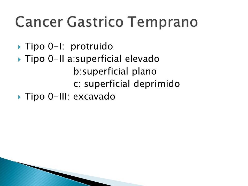 Tipo 0-I: protruido Tipo 0-II a:superficial elevado b:superficial plano c: superficial deprimido Tipo 0-III: excavado