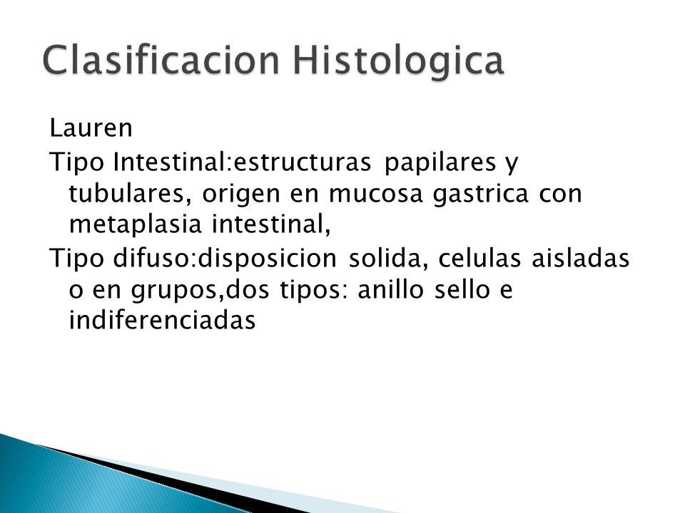 Lauren Tipo Intestinal:estructuras papilares y tubulares, origen en mucosa gastrica con metaplasia intestinal, Tipo difuso:disposicion solida, celulas