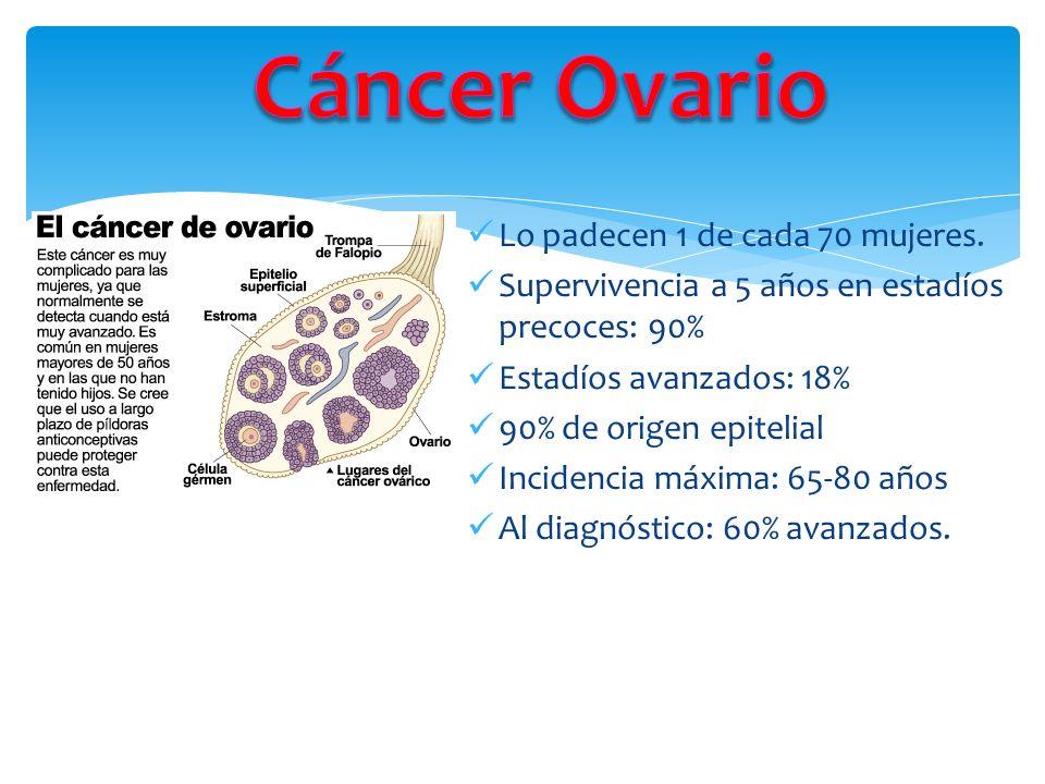 1.Teoría ovulación incesante: Nuligestas Menarca temprana Menopausia tardía Obesidad 2.