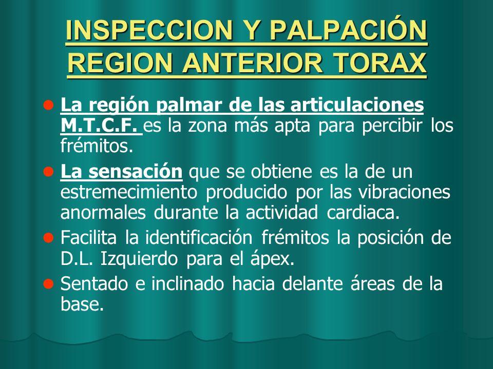 INSPECCION Y PALPACIÓN REGION ANTERIOR TORAX La región palmar de las articulaciones M.T.C.F. es la zona más apta para percibir los frémitos. La sensac