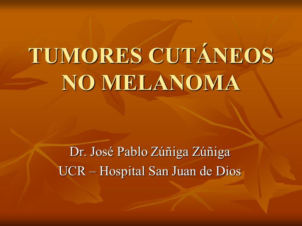TUMORES CUTÁNEOS NO MELANOMA Dr. José Pablo Zúñiga Zúñiga UCR – Hospital San Juan de Dios