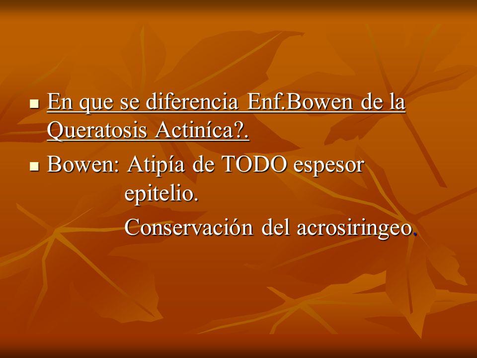 En que se diferencia Enf.Bowen de la Queratosis Actiníca?. En que se diferencia Enf.Bowen de la Queratosis Actiníca?. Bowen: Atipía de TODO espesor ep