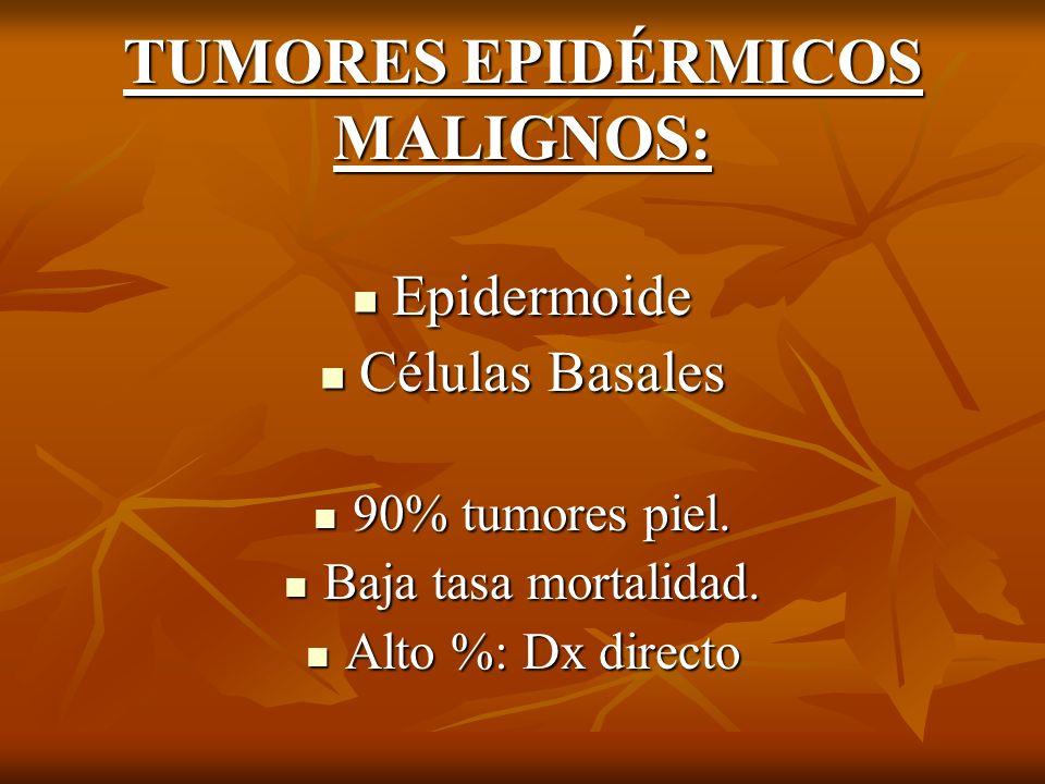 TUMORES EPIDÉRMICOS MALIGNOS: Epidermoide Epidermoide Células Basales Células Basales 90% tumores piel. 90% tumores piel. Baja tasa mortalidad. Baja t