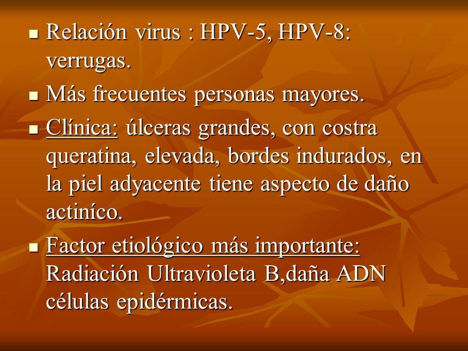 Relación virus : HPV-5, HPV-8: verrugas. Relación virus : HPV-5, HPV-8: verrugas. Más frecuentes personas mayores. Más frecuentes personas mayores. Cl