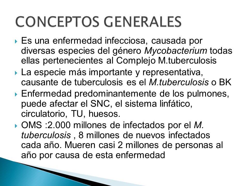 Es una enfermedad infecciosa, causada por diversas especies del género Mycobacterium todas ellas pertenecientes al Complejo M.tuberculosis La especie