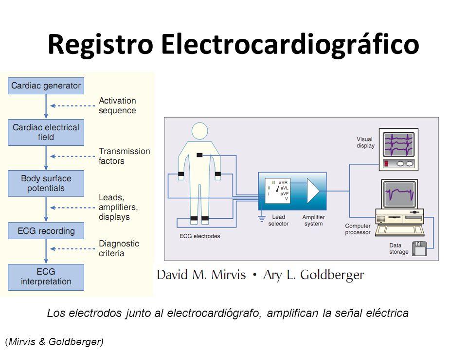 Registro Electrocardiográfico Los electrodos junto al electrocardiógrafo, amplifican la señal eléctrica (Mirvis & Goldberger)