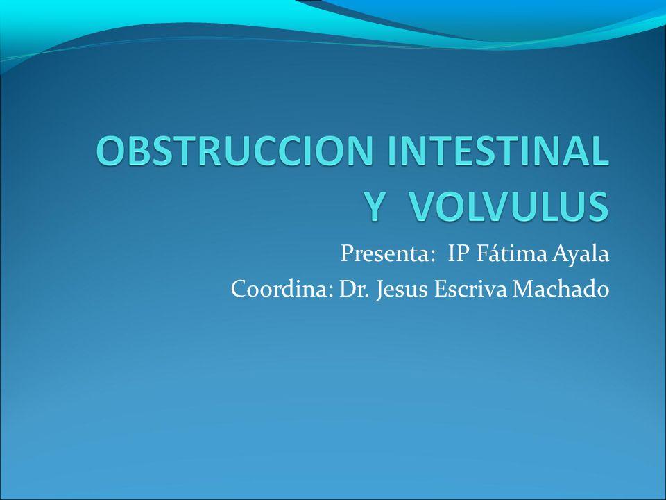 Presenta: IP Fátima Ayala Coordina: Dr. Jesus Escriva Machado