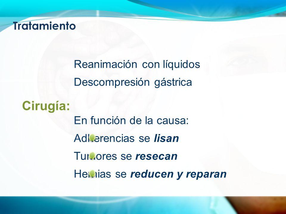 Tratamiento Reanimación con líquidos Descompresión gástrica En función de la causa: Adherencias se lisan Tumores se resecan Hernias se reducen y reparan Cirugía: