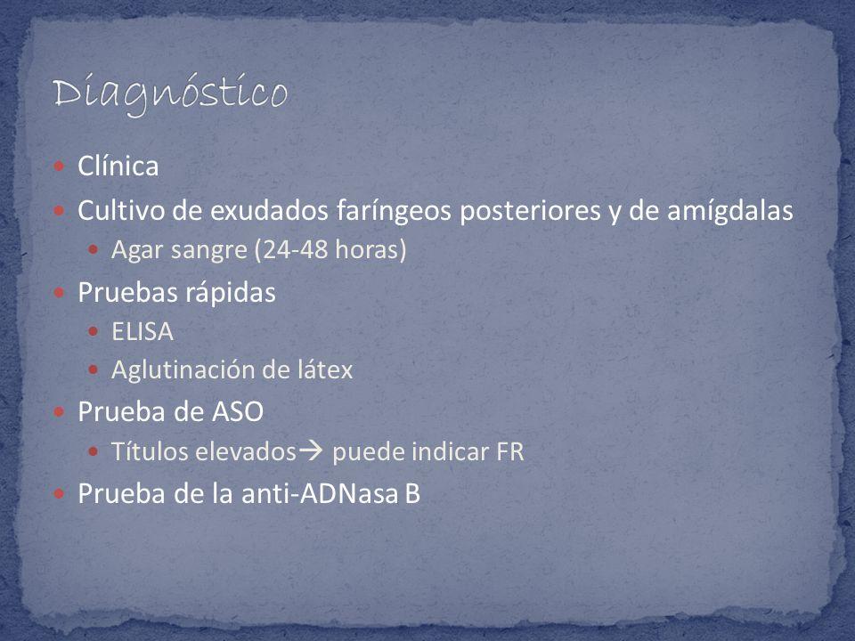 Clínica Cultivo de exudados faríngeos posteriores y de amígdalas Agar sangre (24-48 horas) Pruebas rápidas ELISA Aglutinación de látex Prueba de ASO T