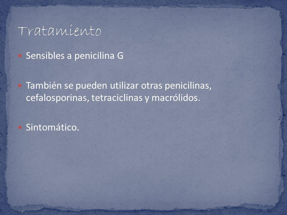 Sensibles a penicilina G También se pueden utilizar otras penicilinas, cefalosporinas, tetraciclinas y macrólidos. Sintomático.