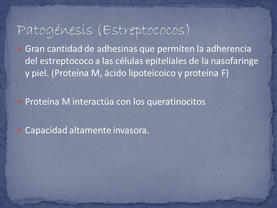 Gran cantidad de adhesinas que permiten la adherencia del estreptococo a las células epiteliales de la nasofaringe y piel. (Proteína M, ácido lipoteic