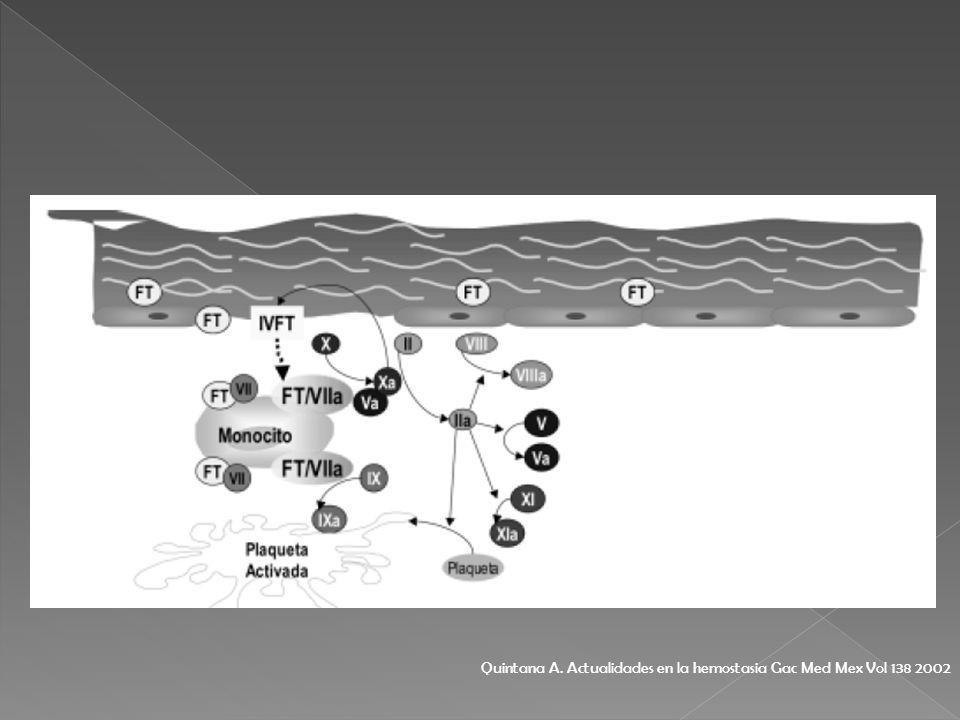 Quintana A. Actualidades en la hemostasia Gac Med Mex Vol 138 2002