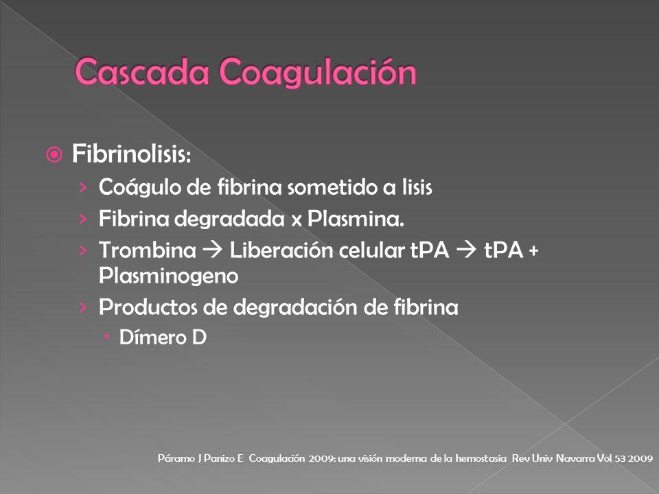 Fibrinolisis: Coágulo de fibrina sometido a lisis Fibrina degradada x Plasmina. Trombina Liberación celular tPA tPA + Plasminogeno Productos de degrad
