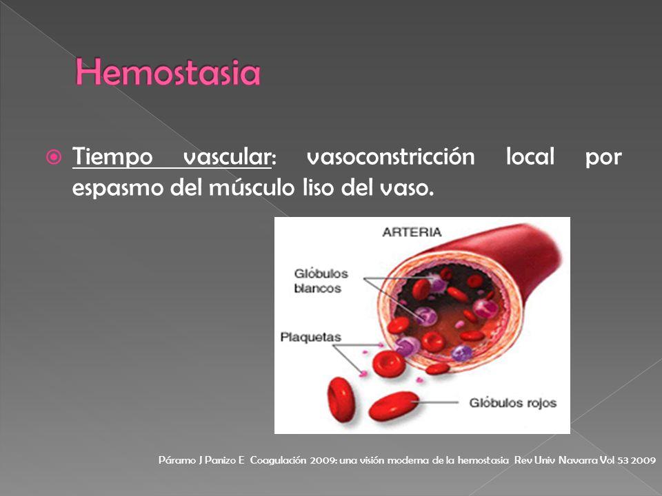 Tiempo vascular: vasoconstricción local por espasmo del músculo liso del vaso. Páramo J Panizo E Coagulación 2009: una visión moderna de la hemostasia
