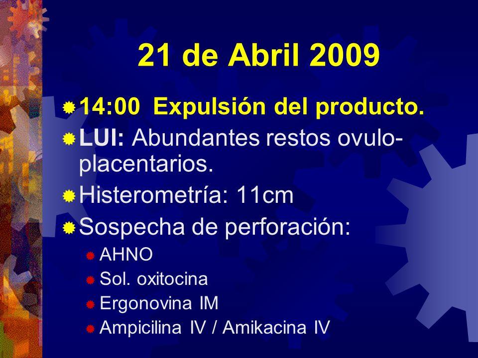 21 de Abril 2009 14:00 Expulsión del producto. LUI: Abundantes restos ovulo- placentarios. Histerometría: 11cm Sospecha de perforación: AHNO Sol. oxit