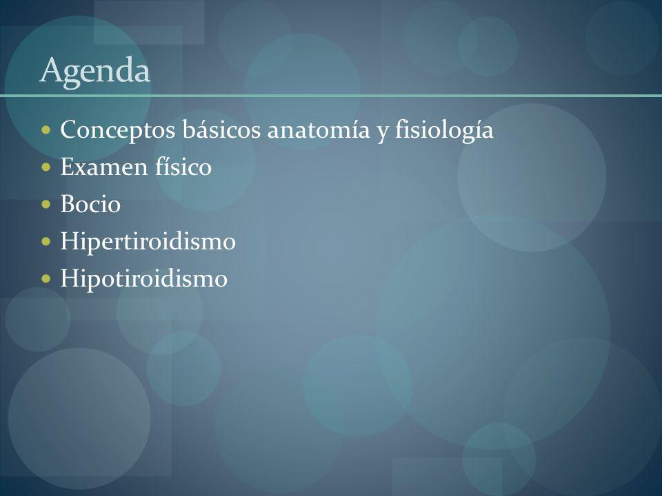 Agenda Conceptos básicos anatomía y fisiología Examen físico Bocio Hipertiroidismo Hipotiroidismo
