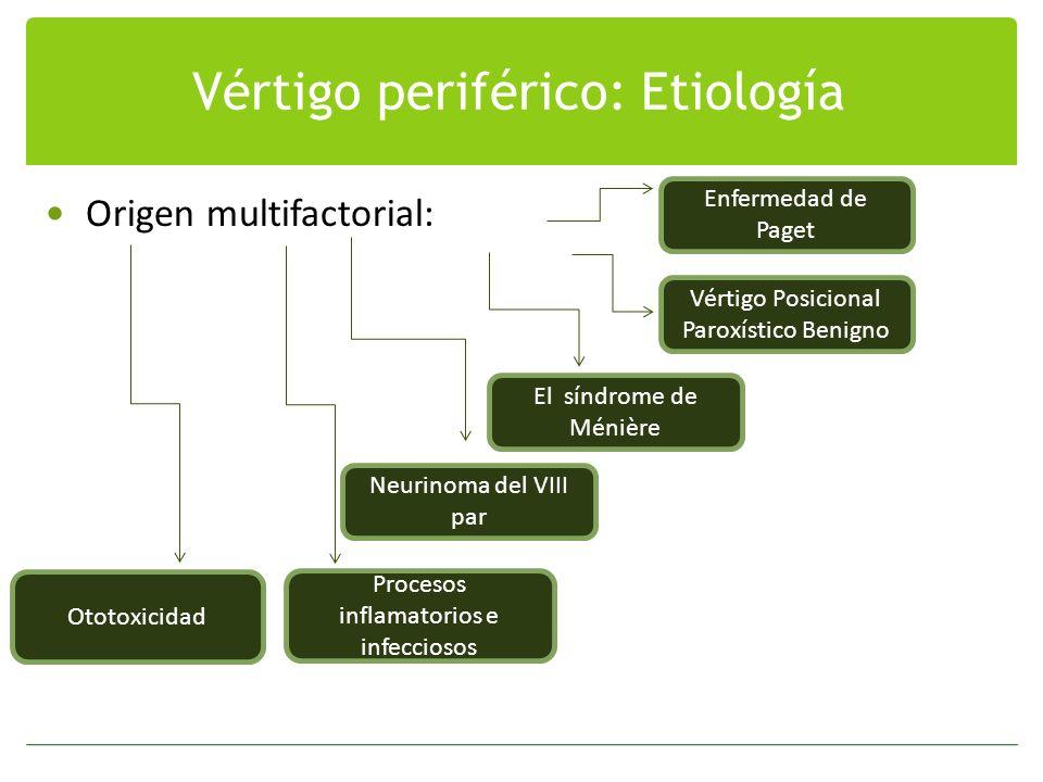 Vértigo periférico: Etiología Origen multifactorial: Enfermedad de Paget Vértigo Posicional Paroxístico Benigno El síndrome de Ménière Neurinoma del V