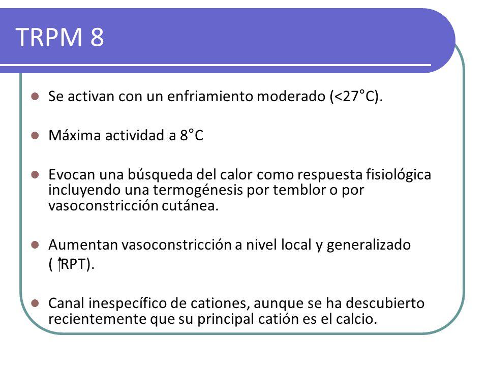 TRPM 8 Se activan con un enfriamiento moderado (<27°C). Máxima actividad a 8°C Evocan una búsqueda del calor como respuesta fisiológica incluyendo una