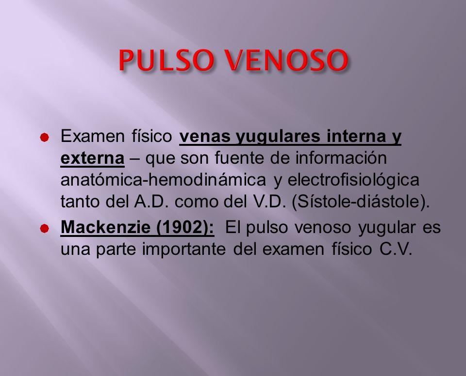 PULSO VENOSO VENAS YUGULARES La información derivada del examen de las venas yugulares incluye: Forma ondas-presión Inferencias anatomofisiológicas.