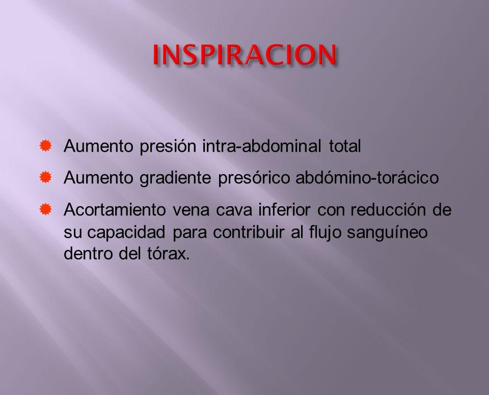 Aumento presión intra-abdominal total Aumento gradiente presórico abdómino-torácico Acortamiento vena cava inferior con reducción de su capacidad para