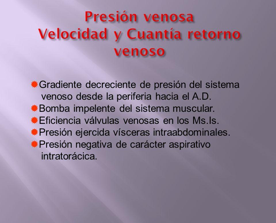Presión venosa Velocidad y Cuantía retorno venoso Gradiente decreciente de presión del sistema venoso desde la periferia hacia el A.D. Bomba impelente