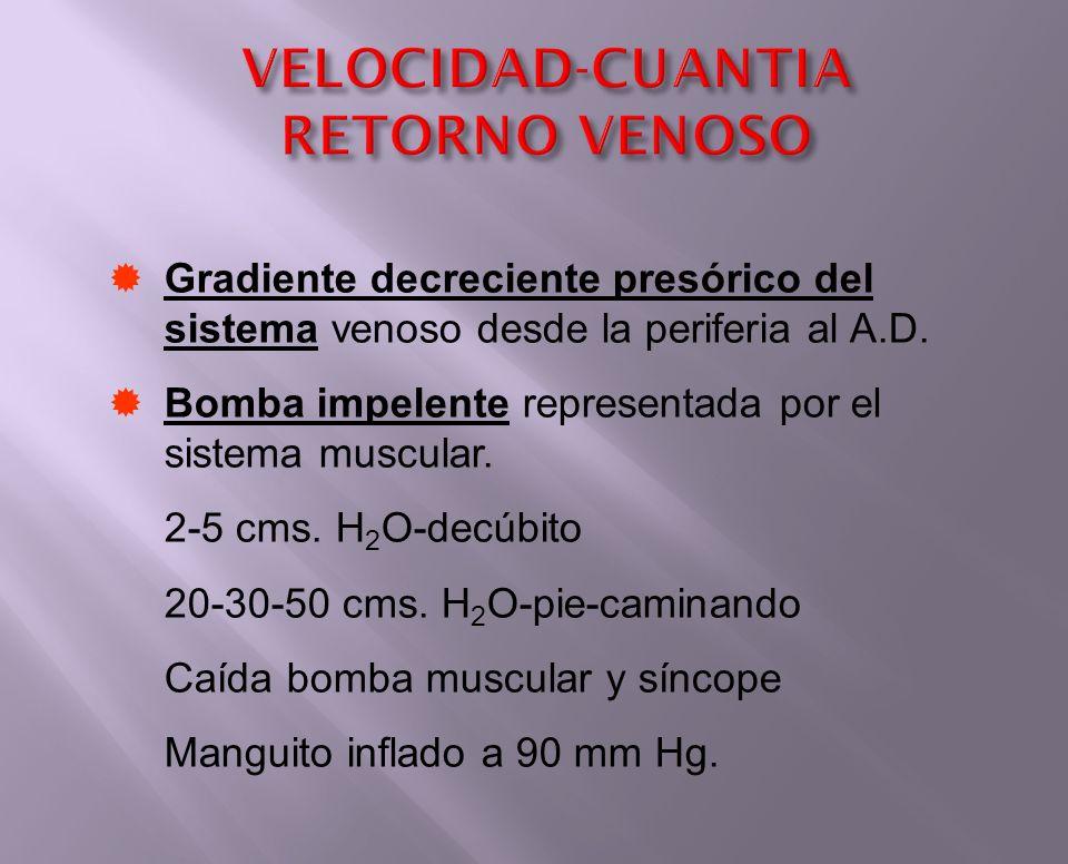Gradiente decreciente presórico del sistema venoso desde la periferia al A.D. Bomba impelente representada por el sistema muscular. 2-5 cms. H 2 O-dec
