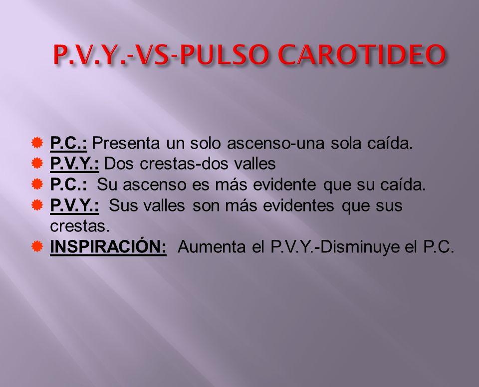 P.V.Y.-VS-PULSO CAROTIDEO P.C.: Presenta un solo ascenso-una sola caída. P.V.Y.: Dos crestas-dos valles P.C.: Su ascenso es más evidente que su caída.