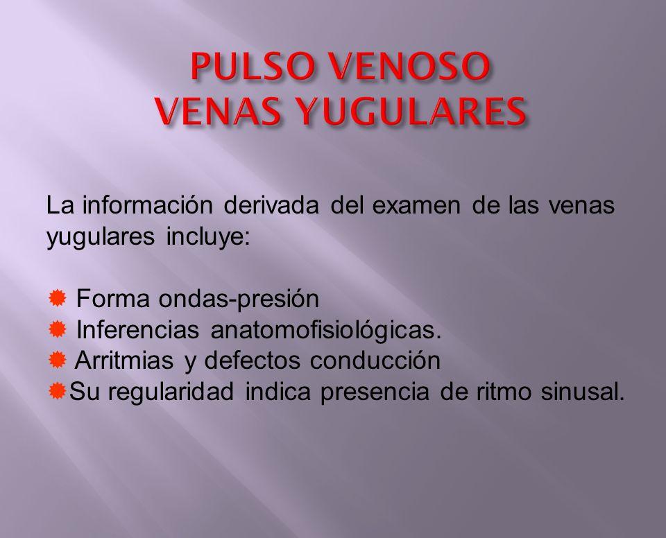 PULSO VENOSO VENAS YUGULARES La información derivada del examen de las venas yugulares incluye: Forma ondas-presión Inferencias anatomofisiológicas. A