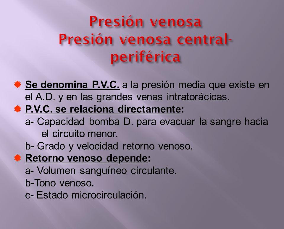 Presión venosa Presión venosa central- periférica Se denomina P.V.C. a la presión media que existe en el A.D. y en las grandes venas intratorácicas. P