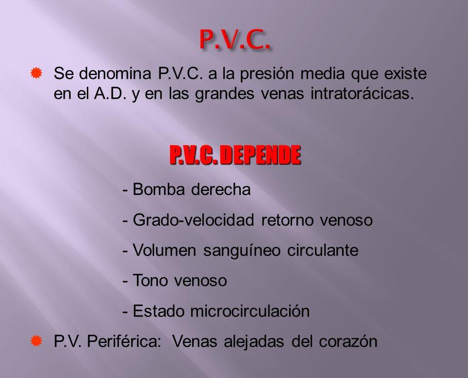 Se denomina P.V.C. a la presión media que existe en el A.D. y en las grandes venas intratorácicas. P.V.C. DEPENDE - Bomba derecha - Grado-velocidad re
