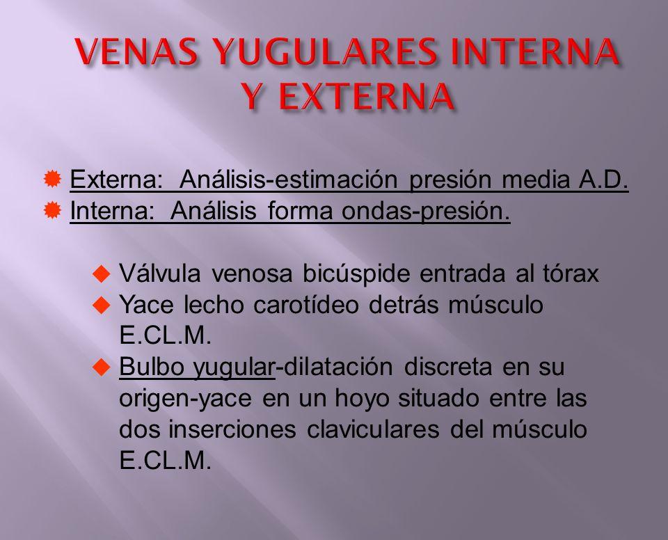 VENAS YUGULARES INTERNA Y EXTERNA Externa: Análisis-estimación presión media A.D. Interna: Análisis forma ondas-presión. Válvula venosa bicúspide entr