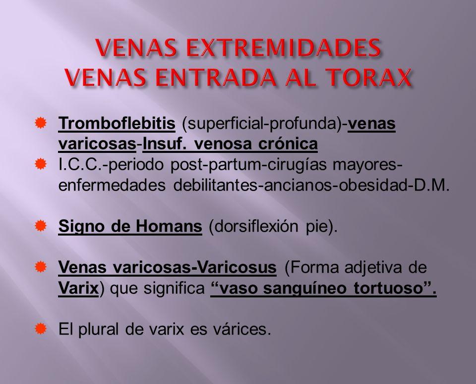 Tromboflebitis (superficial-profunda)-venas varicosas-Insuf. venosa crónica I.C.C.-periodo post-partum-cirugías mayores- enfermedades debilitantes-anc