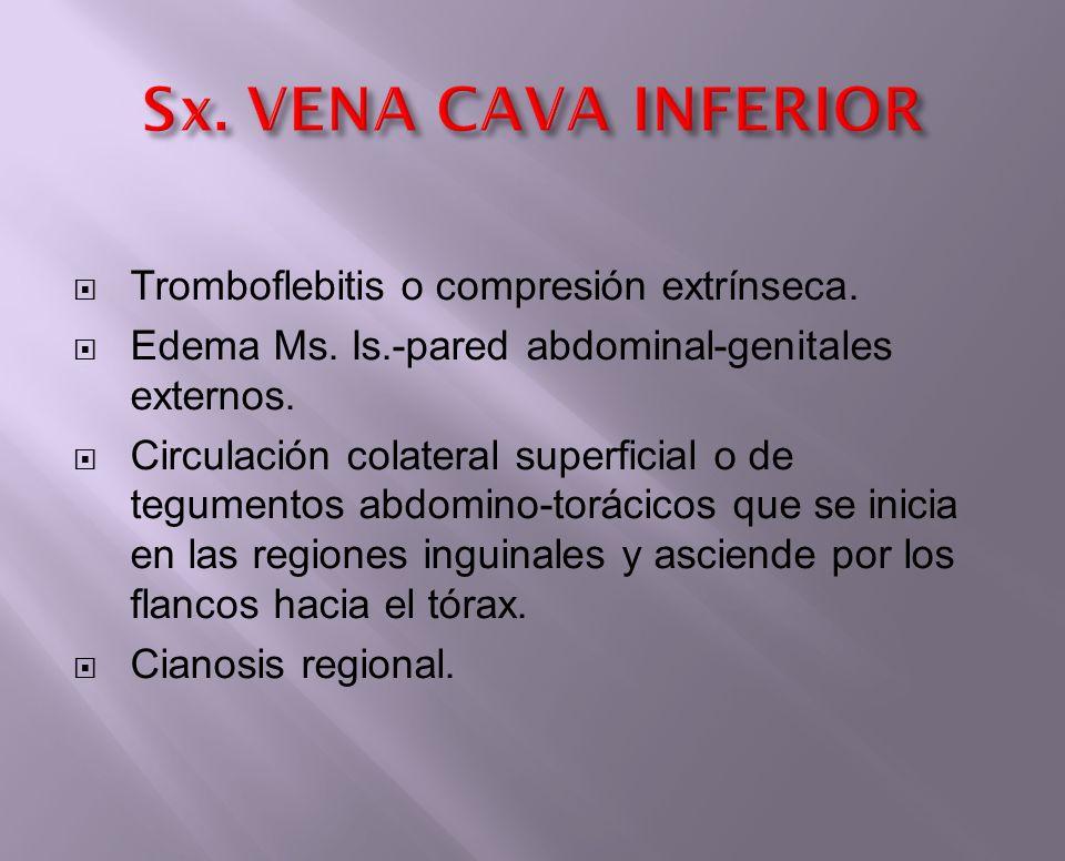 Tromboflebitis o compresión extrínseca. Edema Ms. Is.-pared abdominal-genitales externos. Circulación colateral superficial o de tegumentos abdomino-t