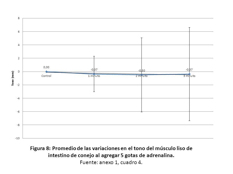 Figura 8: Promedio de las variaciones en el tono del músculo liso de intestino de conejo al agregar 5 gotas de adrenalina.
