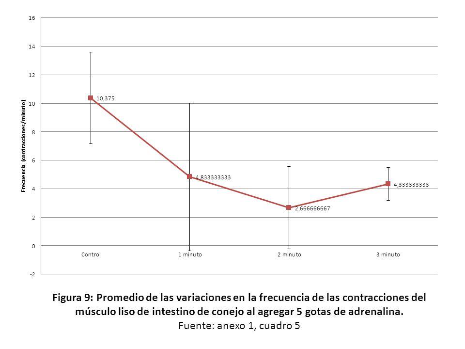 Figura 9: Promedio de las variaciones en la frecuencia de las contracciones del músculo liso de intestino de conejo al agregar 5 gotas de adrenalina.