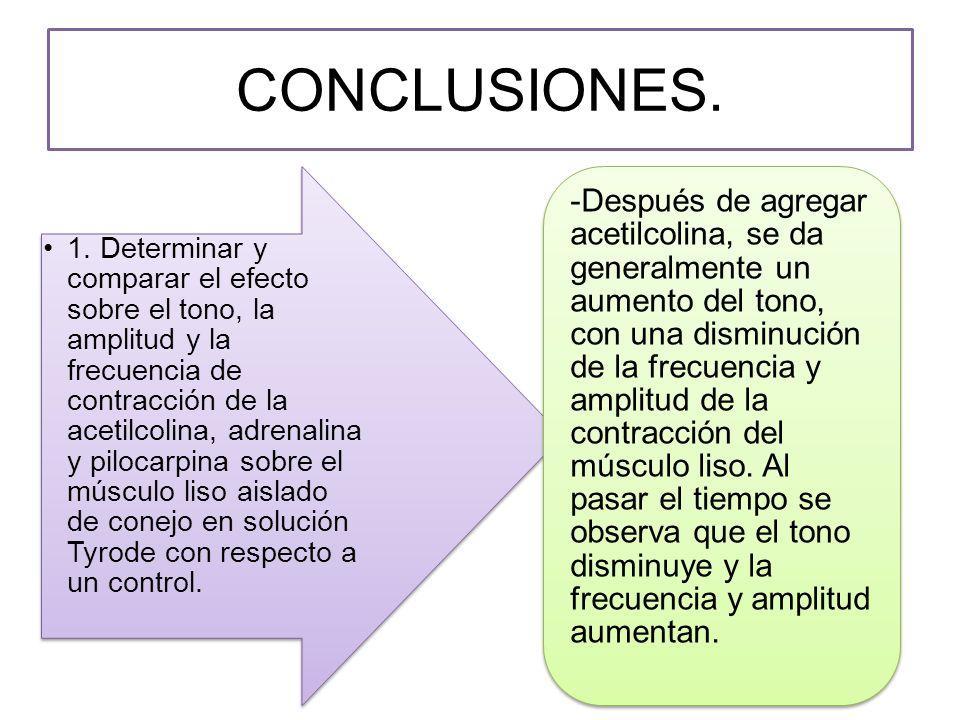 CONCLUSIONES.1.