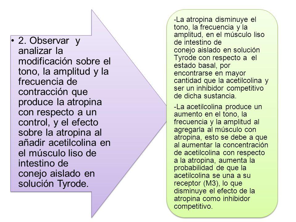 2. Observar y analizar la modificación sobre el tono, la amplitud y la frecuencia de contracción que produce la atropina con respecto a un control, y