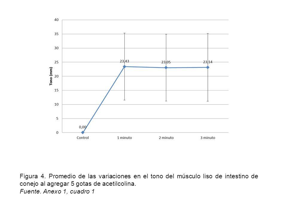 Figura 12: Promedio de las variaciones en el tono del músculo liso de intestino de conejo al agregar 5 gotas de pilocarpina.