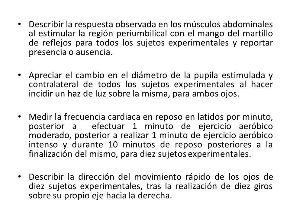 Conclusiones REFLEJOS Al percutir con el martillo de reflejos a nivel del tendón rotuliano, mediante técnica estándar, se evidenció normorreflexia en la mayoría de sujetos experimentales e hiporreflexia en sólo un sujeto experimental.